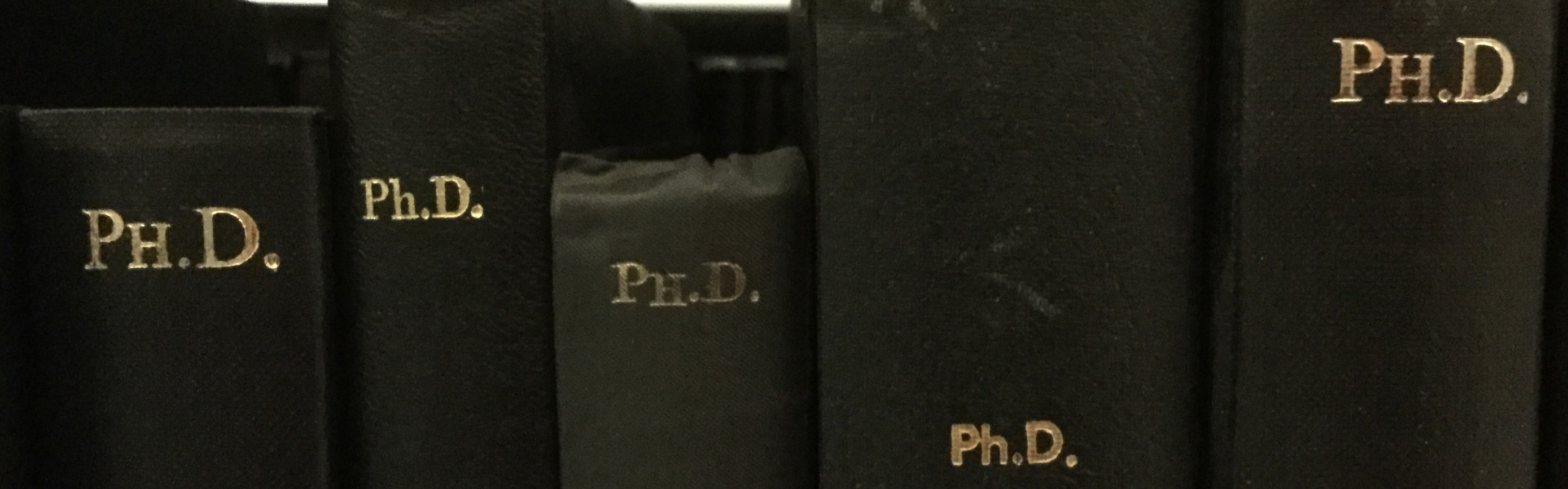 A Survival Guide to a PhD